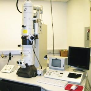 mikroskop-elektron